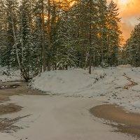 Закатный свет :: vladimir