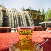 Ада-чай в Дим-чае :: Наталья Ерёменко