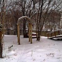 Вот и зима пришла. :: Пётр Сесекин