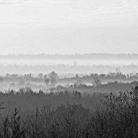 ..туманные ярусы... :: Александр Герасенков