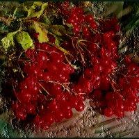 Цвет калины - красный! :: Нина Корешкова