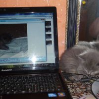 Ноутбук - это интересно. :: шубнякова