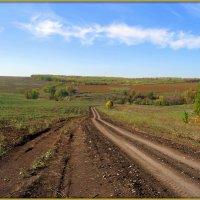 Дорога в осень :: Андрей Заломленков