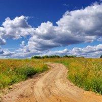 Полевая дорога :: Валерий Талашов