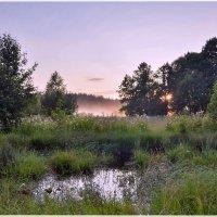 фиолетовый туман :: Николай Колобов