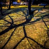 Света и тени :: Игорь Герман