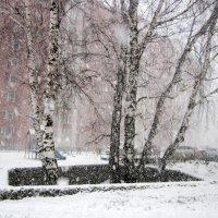 Снегопад, снегопад не мети мне на косы ... :: Мила Бовкун