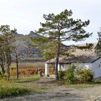 Виноградный домик :: Виктор Шандыбин