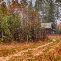 Заброшенный дом :: Алексей Солодков