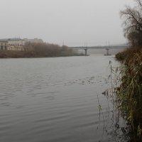 Туман ещё не рассеялся. :: Борис Митрохин