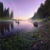 Лесное озеро около д.Головково 2 :: Павел Корнеев