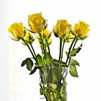 Цветы разлуки :: Elena Ignatova
