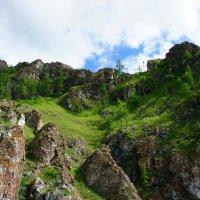 В высокогорьях Алатау :: Ольга Чистякова