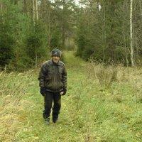 поход в лес ... :: Михаил Жуковский