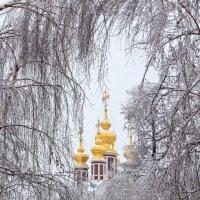 В зимнем обрамлении :: Elena Ignatova