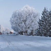 Зимнее утро :: Алексей Масалов
