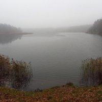 Туман, туман. Седая пелена :: Андрей Лукьянов