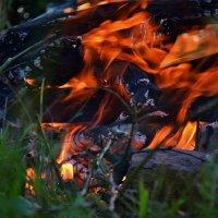 Огонь и пламя :: Татьяна Кретова