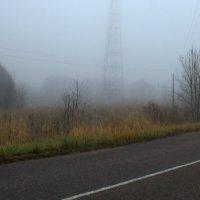 Туман :: Наталия Зыбайло