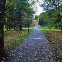 В кремлевском парке осенью (этюд 8) :: Константин Жирнов
