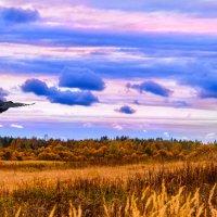 Глубокой осени пейзаж :: Анатолий Клепешнёв