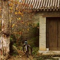 Где-то в Пекине :: Anastasia Mirnaya