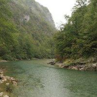 Каньон реки Тара :: Marina Talberga