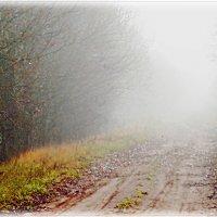 Туман, дорога... :: Cerg Smith