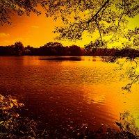 Золотое озеро :: Nina Yudicheva