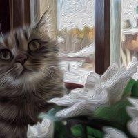 Кот в масле.... :: maxihelga ..............