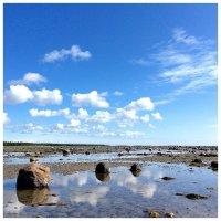 Соловецкие острова, Белое море :: Дарина Михеева