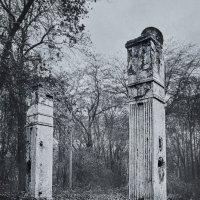 Руины в старом парке :: Александр Линник