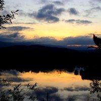 Летний закат :: Виктория Браун