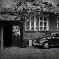 Volkswagen Beetle вариант №3 :: Veyla Vulpes