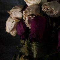 Цветы :: Даниил Ульянов