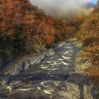Осеннее изобилие красок :: Бронислав Богачевский