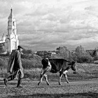 Пастух :: Александр Архипкин