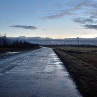 Мокрая дорога :: Юрий Анипов