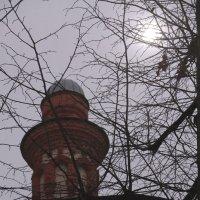 Лунное сияние ноября... :: Tatiana Markova
