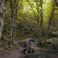 В горах :: Виктория Велес