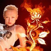 Огненный цветок :: Oleg Goman