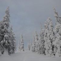 зима в горах :: Константин Трапезников