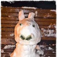Первый снежок - снежный лубок :: muh5257