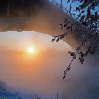 Холодный ноябрь... :: Алексей Белик