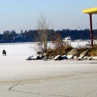 Одинокое соревнование в рыбалке. :: Мила Бовкун