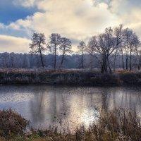 Зимушка-зима :: Татьяна Котик