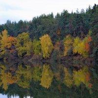 Осенняя палитра :: Валентина Данилова