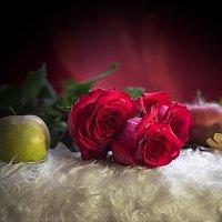 Розы и яблоки :: Валерий Лазарев