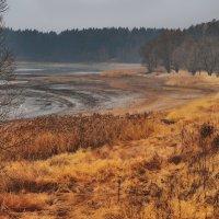 Глубокой осенью :: sergej-smv