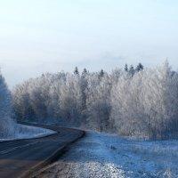 Дорожный поворот :: Светлана